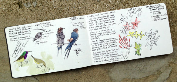sketchbook-spread-1