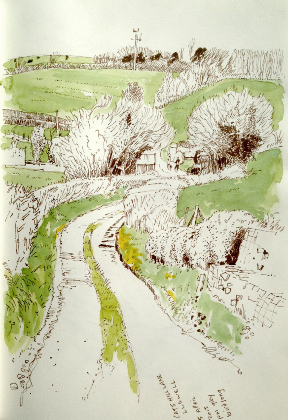 cats-hill-lane-ludwell