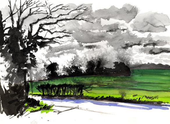 hertfordshire-field-evening