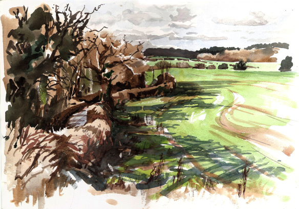 spring-lane-tewin-feb-22-2014-watercolour-crop