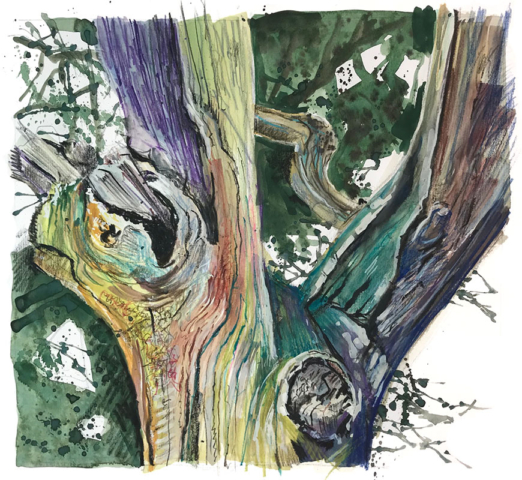 Oak Trunk. mixed media sketchbook drawing